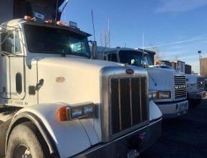 casilio-trucking
